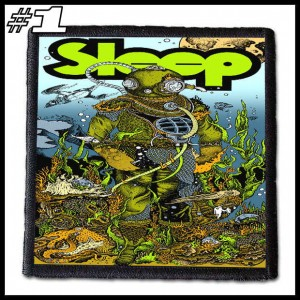 SLEEP -- Patch